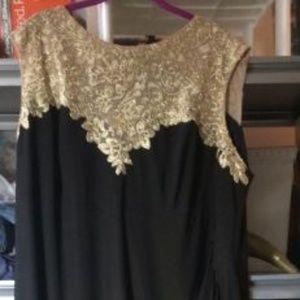 Evening Dress: Alex Evenings 22W